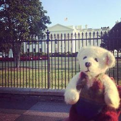 Washington 11 september 2013